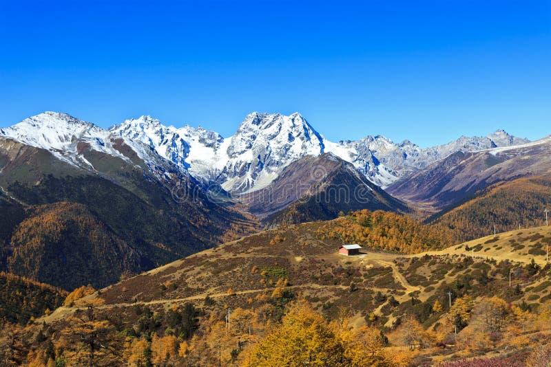 Paisaje de la montaña de la nieve en otoño imagen de archivo libre de regalías