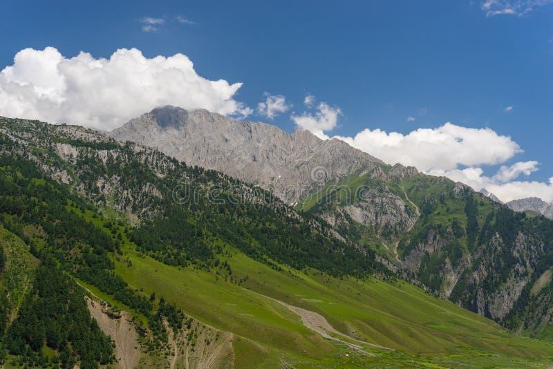 Paisaje de la montaña de Sonamarg en el verano, Sonamarg, Jammu Kashmir, imagen de archivo libre de regalías