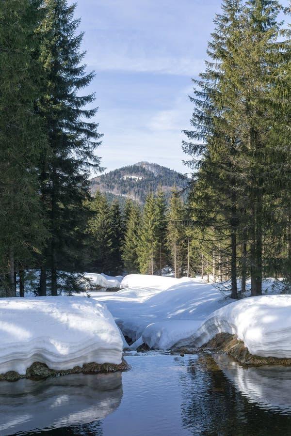 Paisaje de la montaña del invierno con alrededores de la corriente de Jakuszyce, Polonia foto de archivo