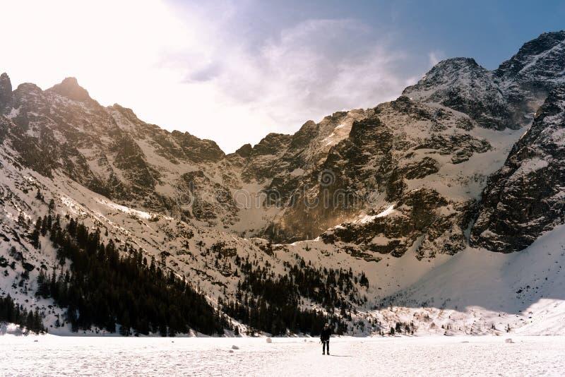 Paisaje de la montaña del invierno en estilo del vintage Montañas polacas Tatra en el invierno imagen de archivo