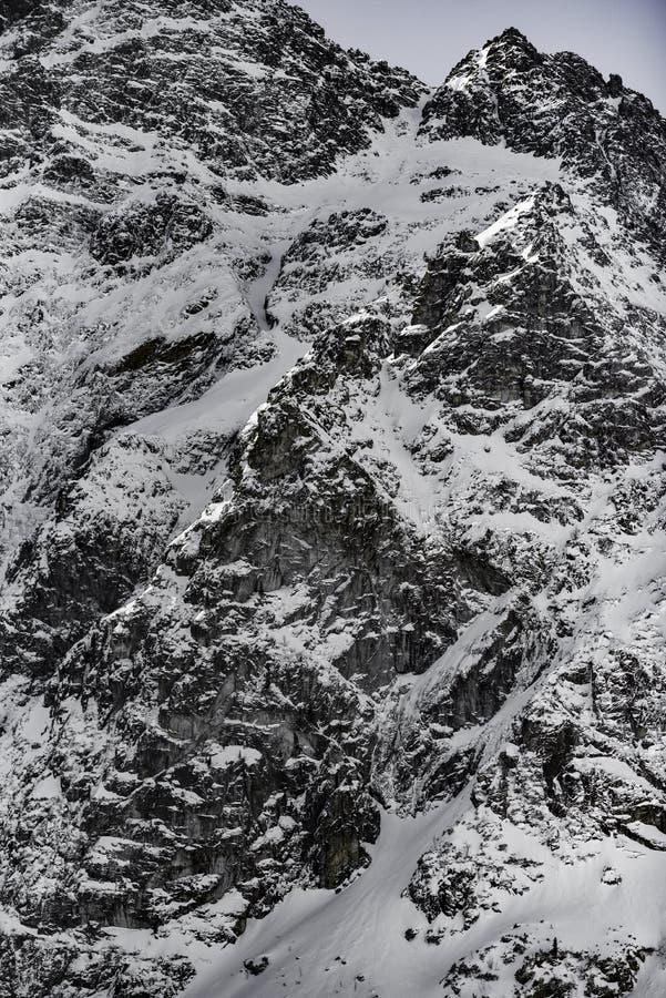 Paisaje de la montaña del invierno en estilo del vintage Montañas polacas Tatra en el invierno fotografía de archivo libre de regalías