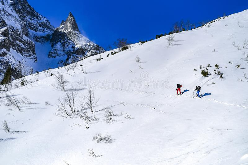 Paisaje de la montaña del invierno Montañas polacas Tatra en el invierno fotografía de archivo libre de regalías