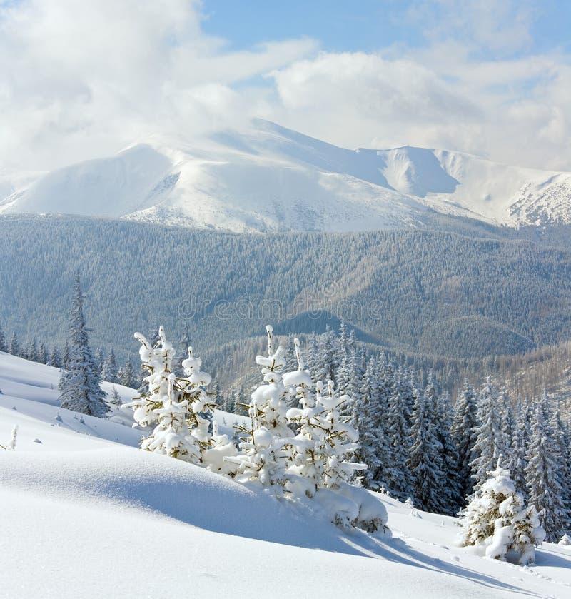 Paisaje de la montaña del invierno Nevado fotografía de archivo libre de regalías