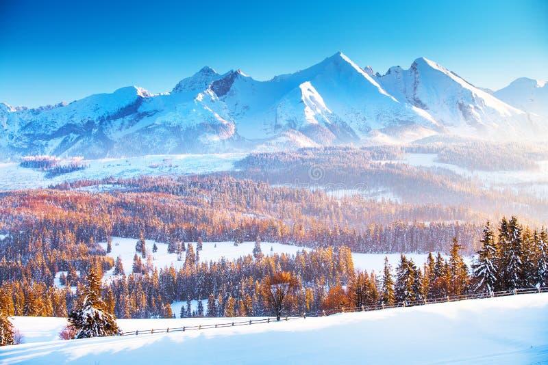 Paisaje de la montaña del invierno  Salida del sol del invierno en las montañas imagen de archivo libre de regalías