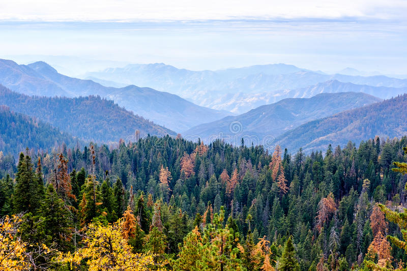 Paisaje de la montaña del parque nacional de secoya en el otoño fotografía de archivo libre de regalías