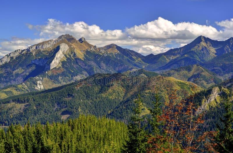 Paisaje de la montaña del verano fotografía de archivo