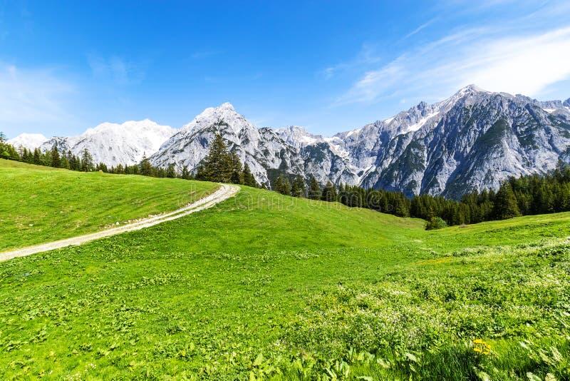 Paisaje de la montaña del verano del canal de la trayectoria de la opinión de las montañas en el Tyrol, Austria fotografía de archivo libre de regalías