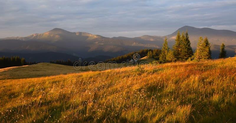 Paisaje de la montaña del verano en luz de la salida del sol fotografía de archivo