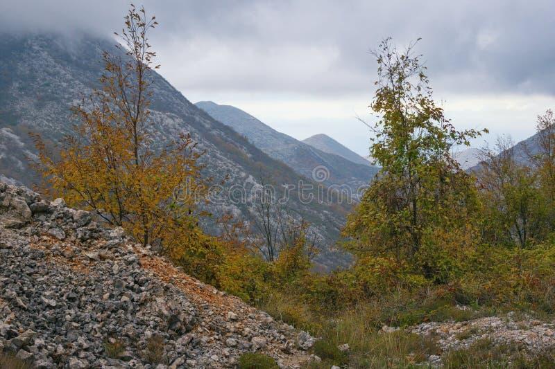 Paisaje de la montaña en día nublado del otoño Montenegro, montañas de Dinaric fotos de archivo