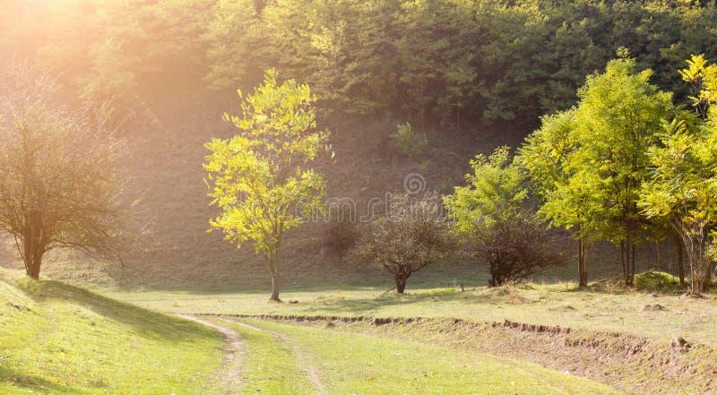 Paisaje de la montaña en otoño foto de archivo libre de regalías