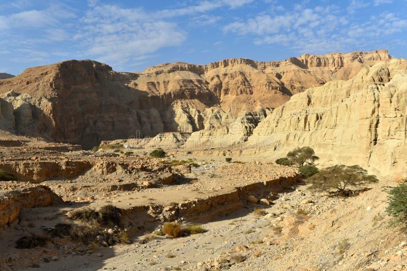Paisaje de la monta?a del desierto fotografía de archivo libre de regalías