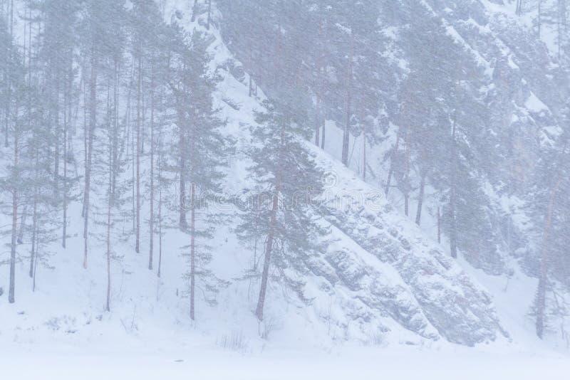 Paisaje de la monta?a durante nevadas foto de archivo