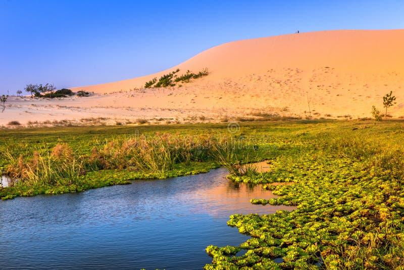 Paisaje de la naturaleza con la duna y el lago de arena en la sol fotografía de archivo libre de regalías
