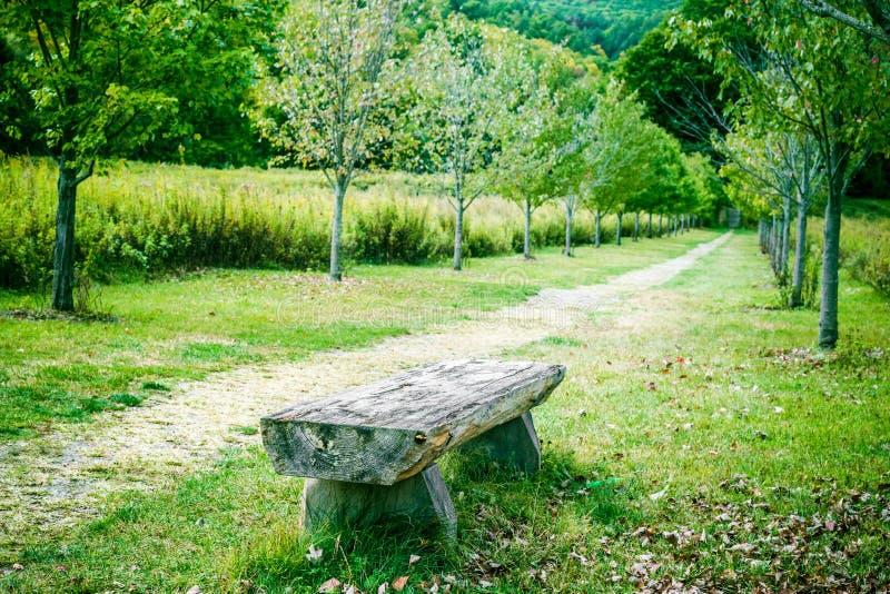 Paisaje de la naturaleza con el banco y la trayectoria de relajación en parque fotografía de archivo