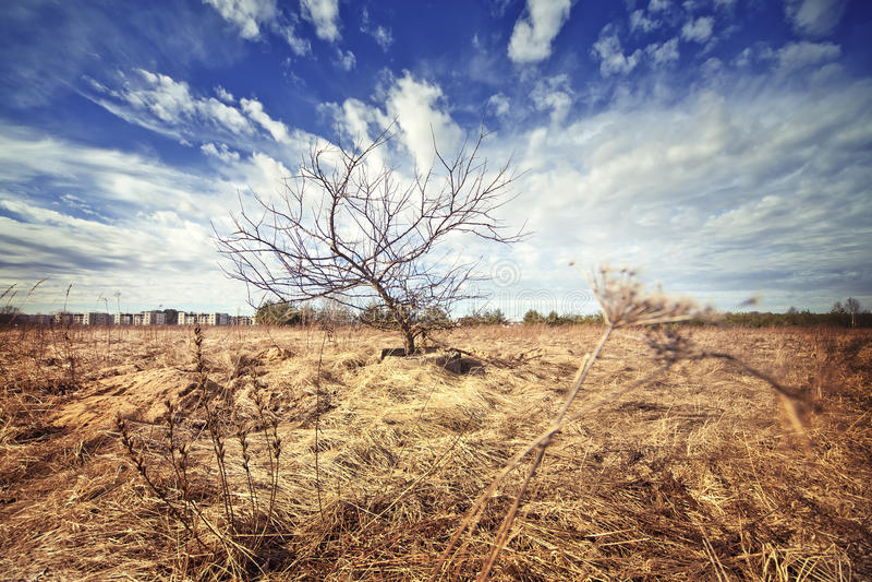 Paisaje de la naturaleza con el filtro del instagram imagenes de archivo