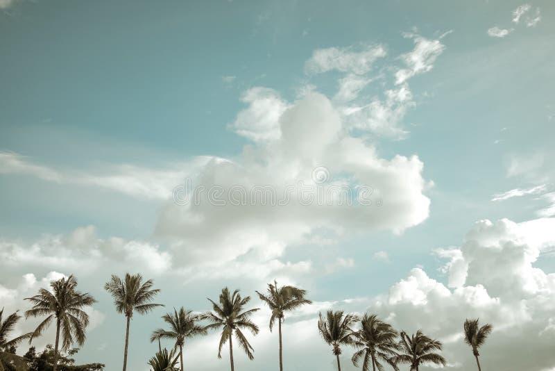 Paisaje de la naturaleza del vintage de la palmera del coco en el cielo azul de la playa tropical con las nubes en verano, foto de archivo libre de regalías