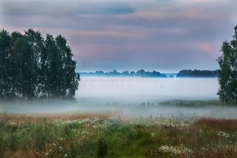 Paisaje de la niebla foto de archivo libre de regalías