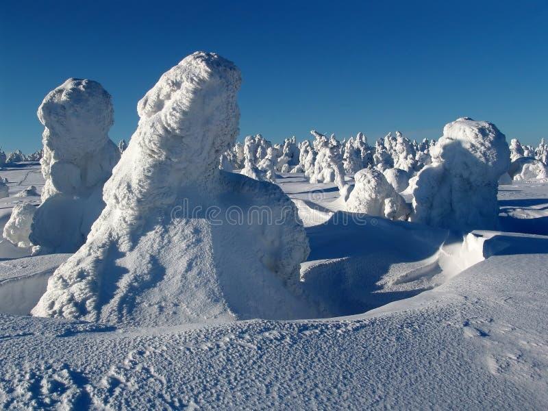 Paisaje de la nieve fotografía de archivo libre de regalías