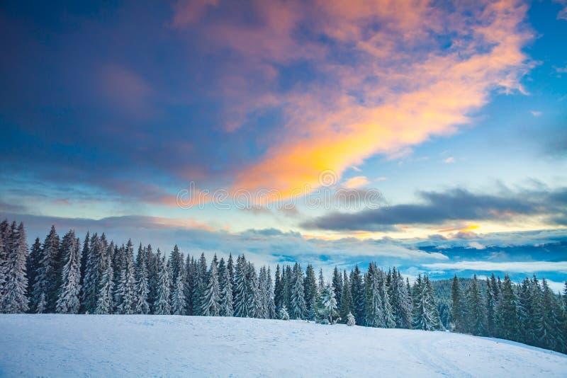 Paisaje de la nieve del invierno en las montañas de Cárpatos ucrania fotografía de archivo