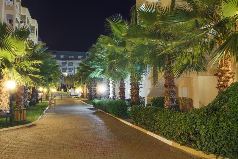 Paisaje de la noche de la ciudad tropical con las palmeras Centro turístico en Turquía imágenes de archivo libres de regalías