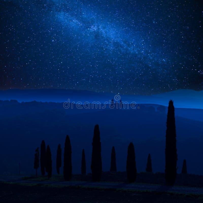 Paisaje de la noche con las estrellas sobre ciprés foto de archivo libre de regalías