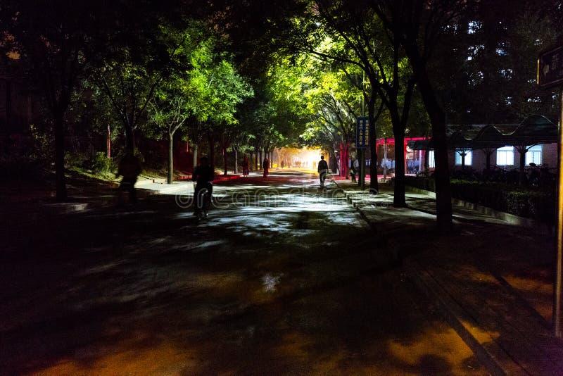 Paisaje de la noche de la carretera principal en la universidad de Tsinghua imagen de archivo libre de regalías