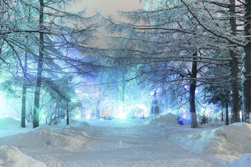 Paisaje de la noche en ciudad del invierno fotos de archivo