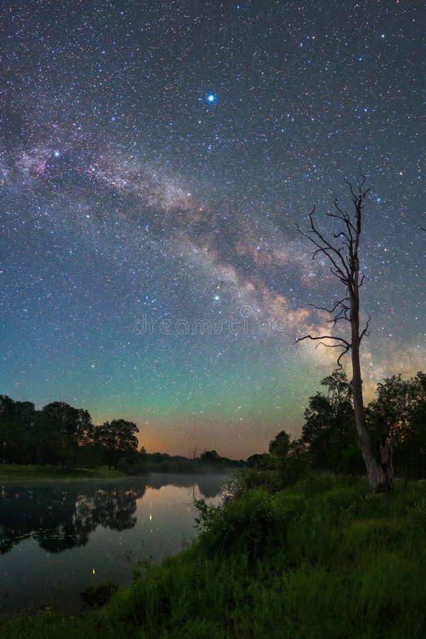 Paisaje de la noche estrellada fotografía de archivo libre de regalías