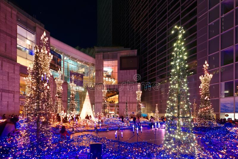 Paisaje de la noche de la exhibición romántica de la iluminación del invierno con los árboles de navidad y las luces adornados de foto de archivo