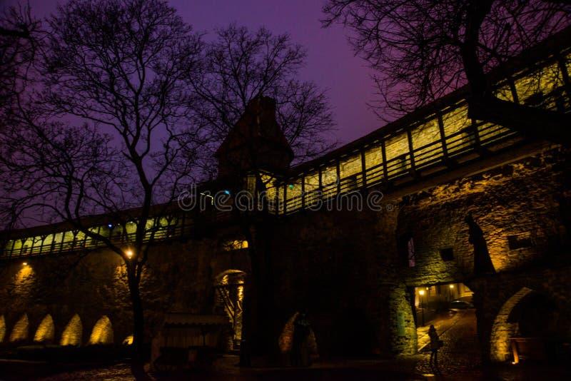 Paisaje de la noche de las paredes de la fortaleza con la iluminación La torre anterior Neitsitorn de la prisión en Tallinn vieja imágenes de archivo libres de regalías