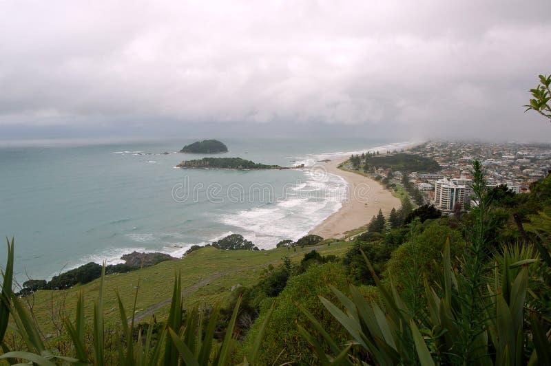 Paisaje de la playa, ciudad de Tauranga, isla del norte, Nueva Zelanda fotos de archivo