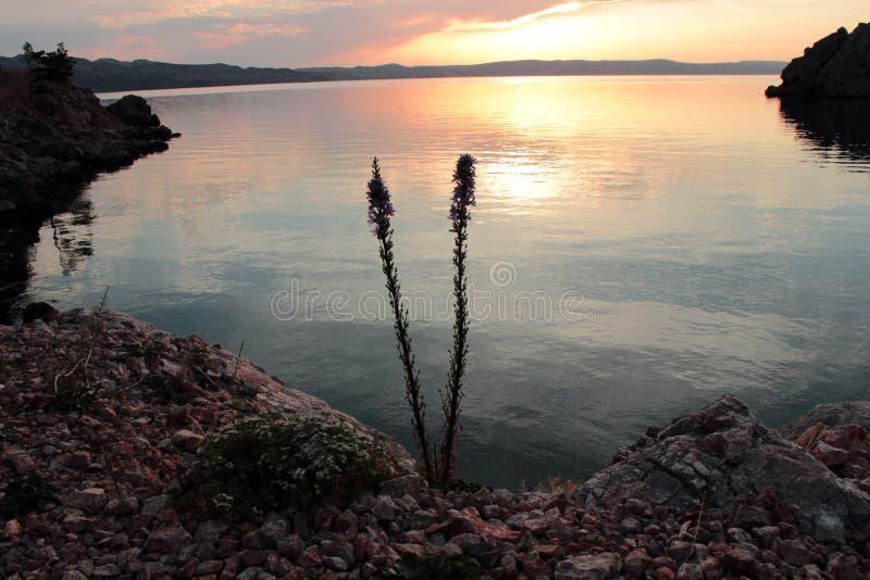 Paisaje de la playa croata imagen de archivo