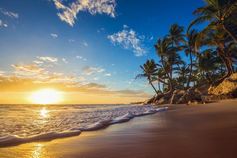 Paisaje de la playa tropical de la isla del paraíso, tiro de la salida del sol fotografía de archivo