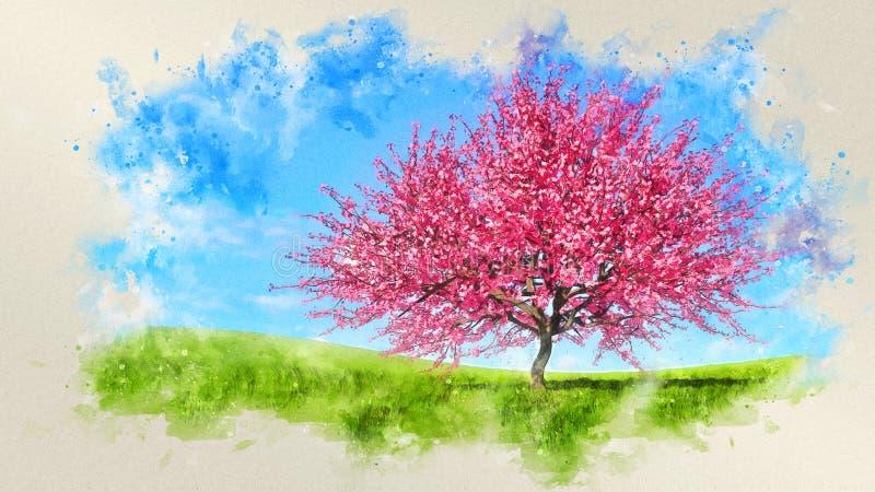 Paisaje de la primavera de la acuarela con las flores de cerezo stock de ilustración