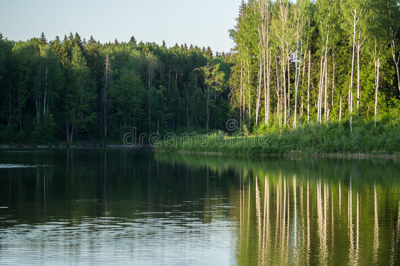 Paisaje de la primavera en el lago en la región de Kaluga (Rusia) foto de archivo