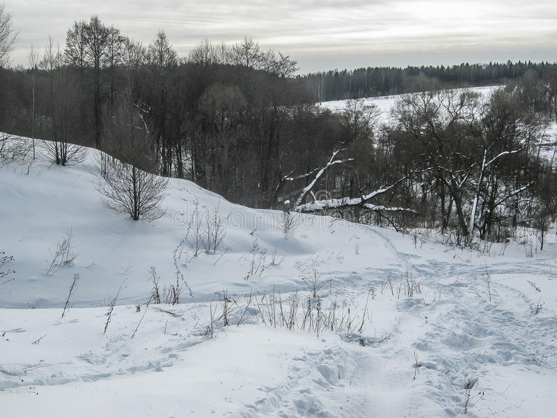 Paisaje de la primavera en el lago en la región de Kaluga (Rusia) fotos de archivo