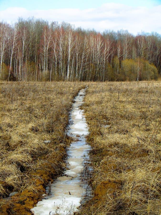 Paisaje de la primavera en la región de Kaluga (Rusia) foto de archivo