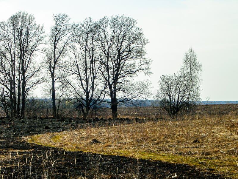 Paisaje de la primavera en la región de Kaluga (Rusia) imagen de archivo
