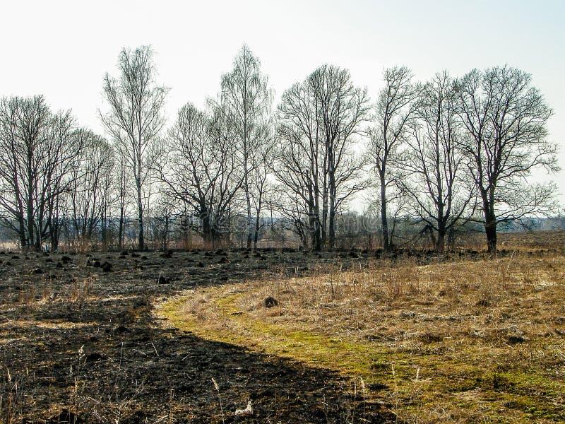 Paisaje de la primavera en la región de Kaluga (Rusia) fotos de archivo