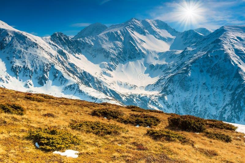 Paisaje de la primavera en un día soleado en las montañas de Fagaras, Cárpatos, Rumania imagenes de archivo