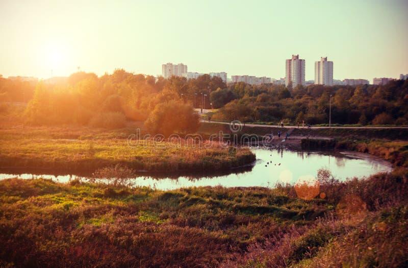 Paisaje de la puesta del sol del otoño con los árboles y el río amarillos y verdes Parque de la caída en Minsk, Bielorrusia Área  fotografía de archivo