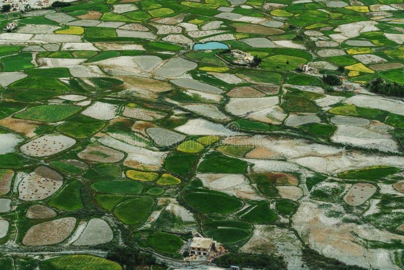 Paisaje de la visión aérea, modelo verde del campo del arroz en zona rural imagen de archivo libre de regalías