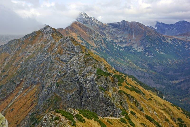 Paisaje de las altas montañas de Tatras, Polonia fotografía de archivo