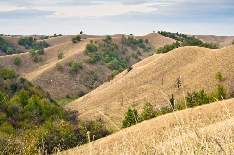Paisaje de las colinas cubiertas con la hierba amarilla en la tarde soleada del otoño imagen de archivo
