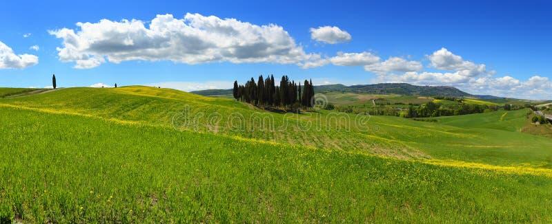 Paisaje de las colinas del panorama de Toscana fotografía de archivo