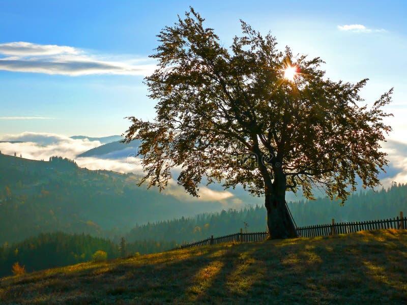 Paisaje de las montañas de Magestik imagen de archivo libre de regalías