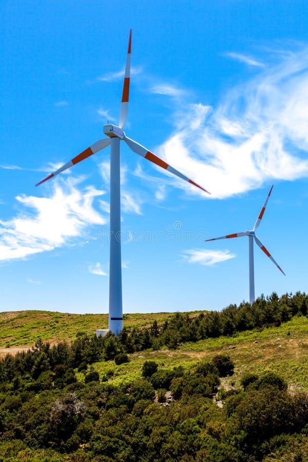 Paisaje de las turbinas de viento del poder de Eco fotografía de archivo