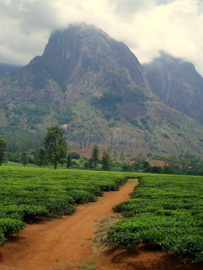 Paisaje de Malawi fotos de archivo
