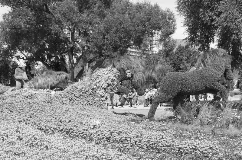 Paisaje de MoasïCanada 150 fotos de archivo