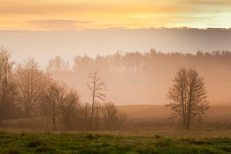 paisaje de niebla fotos de archivo